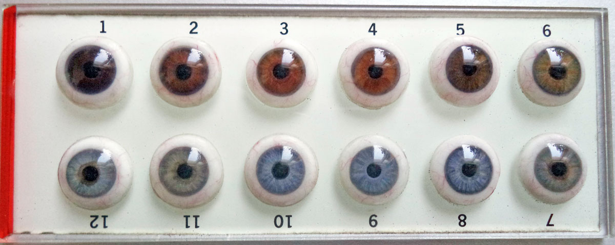 Unknown eye color Chart