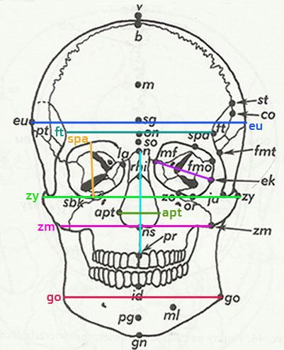 Montaż i konfiguracja systemu BCS do pomiaru temperatury ciała