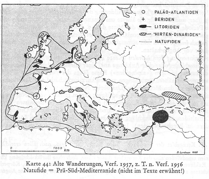 Old races of Europe: Berids, Paleo-Atlantids, Littorids
