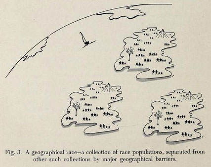 geographical-race